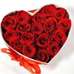 Dlhotrvajúce ruže