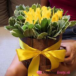 flower box zilina