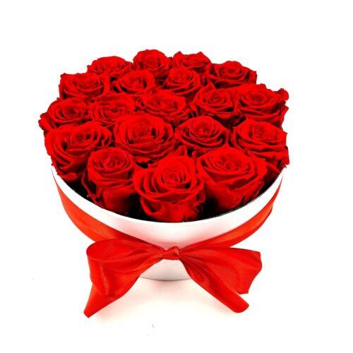 stabilizovane ruže červene